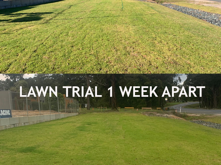 lawn trial ocean2earth australia
